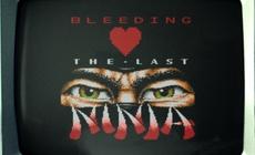 Bleeding Love The Last Ninja